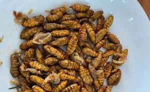 Mê mẩn một món đặc sản có nguồn gốc từ côn trùng ở Việt Nam, anh chàng nước ngoài đăng đàn hỏi tên để mua lại cho bằng được