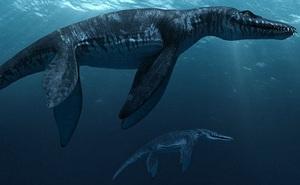 Top 10 sinh vật siêu khổng lồ thời tiền sử dễ bị nhầm thành khủng long