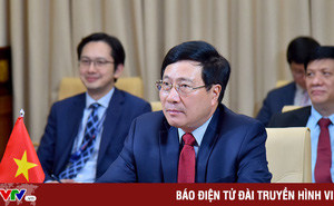 Phó Thủ tướng Phạm Bình Minh nêu 4 đề xuất để cộng đồng quốc tế ứng phó hiệu quả với COVID-19