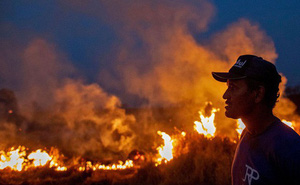Rừng Amazon vẫn đang cháy ngày càng dữ dội hơn: 1.202 km2 rừng bị xóa sổ trong 4 tháng, ngang bằng diện tích một quốc gia