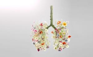 """Khi môi trường luôn ô nhiễm và bệnh COVID-19 vẫn """"rình rập"""", hãy nhớ 3 việc cần tránh xa và 9 việc cần làm để phổi luôn khỏe mạnh"""