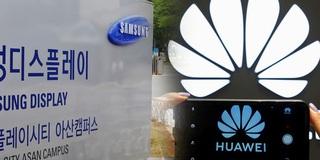 Samsung xin được giấy phép cung cấp màn hình cho Huawei