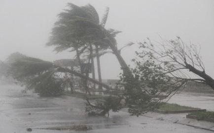 Tin mới nhất về cơn bão số 9