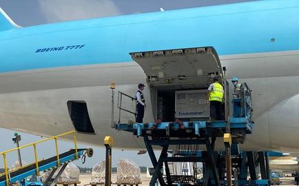 Máy bay chở lô vắc xin COVID-19 đầu tiên về tới Việt Nam, Thứ trưởng Bộ Y tế Trương Quốc Cường ở sân bay tiếp nhận
