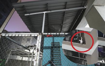 Tình trạng sức khoẻ của bé gái 3 tuổi rơi từ tầng 12 xuống đất được nam tài xế đỡ kịp