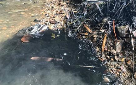 Vụ đổ dầu thải gây ô nhiễm nguồn nước sông Đà: Công an triệu tập một số người liên quan
