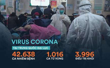 Dịch virus corona: Số người tử vong ở Trung Quốc vượt 1.000; Hồ Bắc đón tin tốt ngày thứ 6 liên tiếp