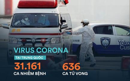 """TQ ghi nhận 636 người tử vong; ông Tập Cận Bình kêu gọi """"chiến tranh nhân dân"""" chống virus"""