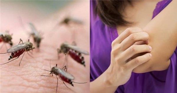 Lý do thú vị vì sao bạn thường xuyên bị muỗi đốt hơn người khác