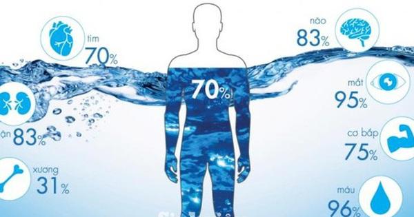 Phần lớn cấu tạo của cơ thể là nước, tại sao ta vẫn phải uống nhiều nước?