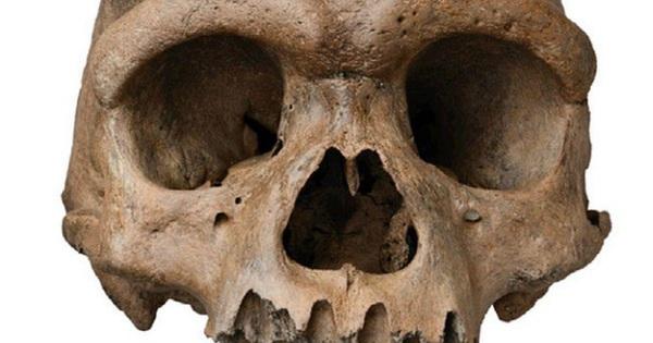 Bí ẩn hộp sọ cổ đại kỳ lạ phát hiện ở Trung Quốc được giải mã sau gần 100 năm