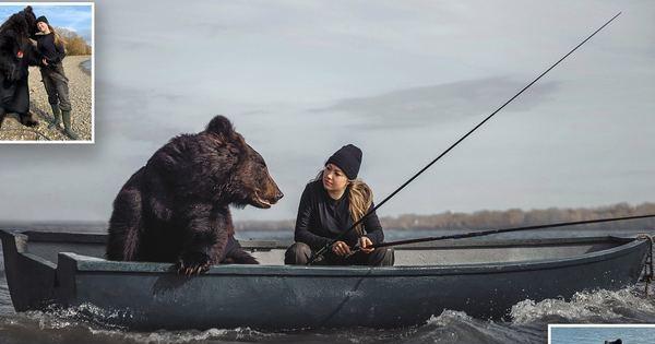 Cô gái giải cứu gấu khổng lồ rồi tự nhận chăm sóc thành thú cưng