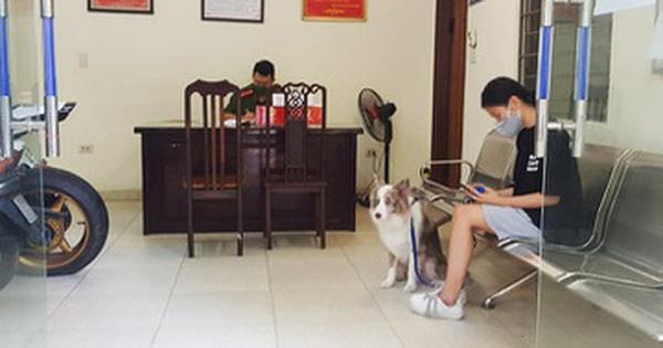 Cô gái Hà Nội bị phạt 2 triệu đồng vì dắt cho đi dạo