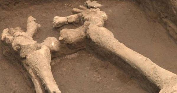 Sốc với bộ xương của 'những người khổng lồ' Trung Quốc 5.000 năm tuổi