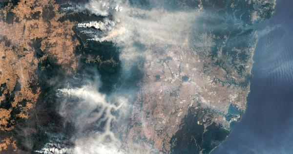 Cháy rừng ở Úc thải ra lượng carbon nhiều gấp 2,6 lần ước tính ban đầu