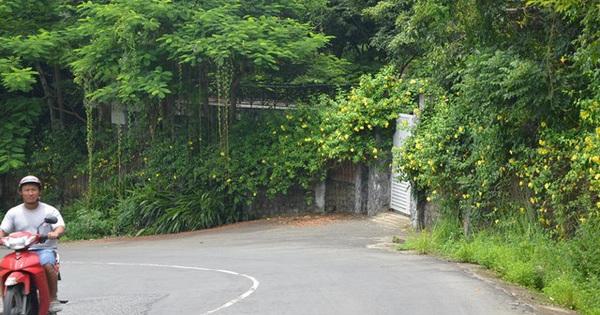 Đà Nẵng lên tiếng trước thông tin báo cáo Thủ tướng không đầy đủ về dự án bán đảo Sơn Trà