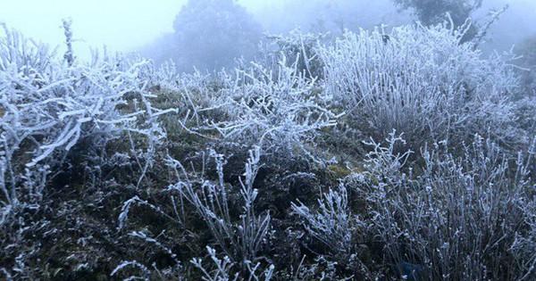 Chuyên gia khí tượng: 'Mùa đông năm nay đến sớm, rét đậm miền Bắc vào cuối tháng 12′