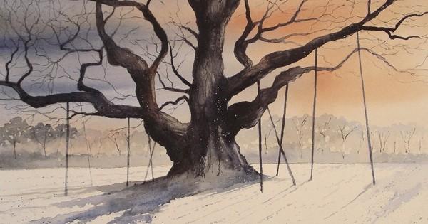 """Huyền thoại Robin Hood từng trốn trong cây sồi này, nhưng đó chỉ là một trong những bí mật về """"báu vật cổ thụ"""" nước Anh"""
