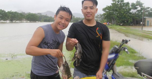 Người dân Nghệ An bơi trong lũ đánh cá, săn bắt chuột làm thức ăn