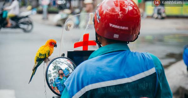 Ông cụ nhặt rác và chú vẹt ở Sài Gòn trên chiếc xe cứu thương đáng yêu được chế tạo từ phế liệu