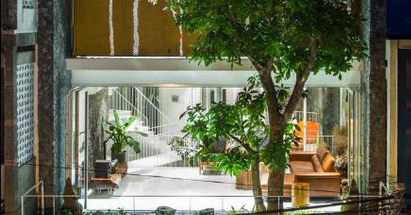 """Nhà phố ở Nha Trang """"gây sốt"""" với thiết kế xanh mướt nhờ những miệt vườn nhỏ"""