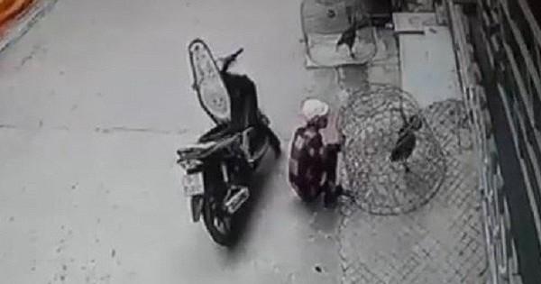Công an viên ở Bà Rịa – Vũng Tàu hỏng mắt vì bị kẻ trộm gà dùng ná thun bắn