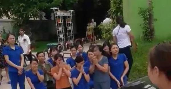 Vụ giáo viên quỳ gối xin dạy: Chủ đầu tư kiến nghị lên tỉnh Nghệ An