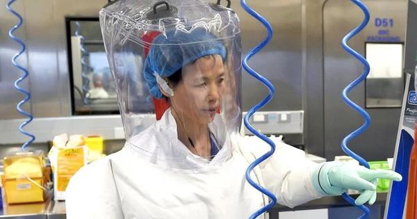 """Báo Nhật: """"Nữ người dơi"""" tại Viện Virus học Vũ Hán từng cảnh báo về Covid-19 từ 2015"""