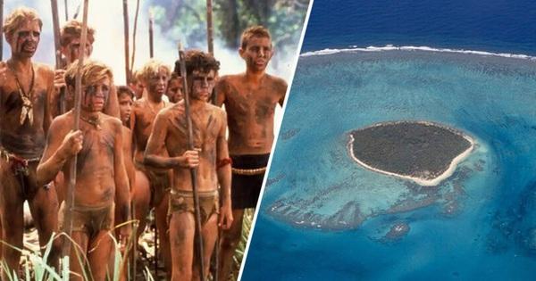Dong buồm ra khơi rồi gặp bão biển, 6 cậu bé mắc kẹt trên đảo hoang suốt 15 tháng và cuộc giải cứu ly kỳ như phim