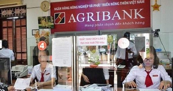 Ủy ban Kinh tế nói gì về việc tăng vốn cho Agribank?