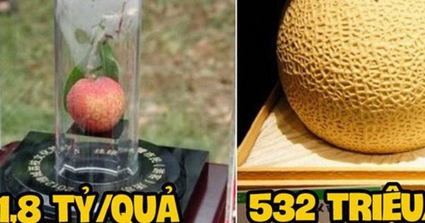 """Ai cũng """"sốc"""" khi nghe qua mức giá của 8 loại trái cây đắt nhất hành tinh này, bỏ ra hàng trăm triệu mới mua được là chuyện bình thường"""