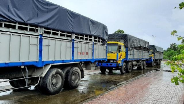 Tạm giữ 3 xe tải sử dụng biển kiểm soát, giấy tờ quân sự giả