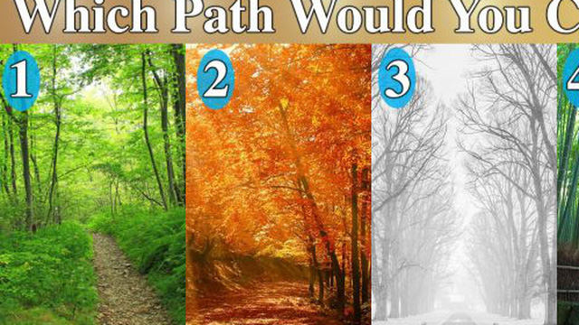 Người nhìn ra vẻ đẹp của con đường u ám hẳn là người đặc biệt: Mời bạn đọc luận giải!