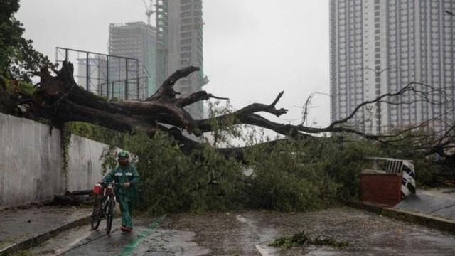Thế giới cùng lúc bị 2 cơn bão mạnh tấn công, thiệt hại nặng cả về người và tài sản