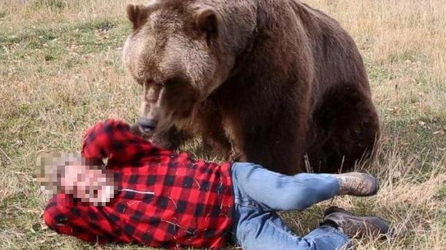 Người đàn ông ở Quảng Nam bị gấu tấn công trọng thương