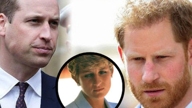 Trong khi anh trai William cố hết sức bảo vệ công lý cho người mẹ quá cố, động thái của Harry gây xôn xao dư luận