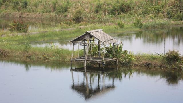 Nguyên nhân đôi nam nữ tử vong bất thường trong lều trông cá ở Bắc Giang