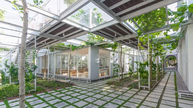 Lớp học giữa không gian cây và hoa tại thành phố Hạ Long