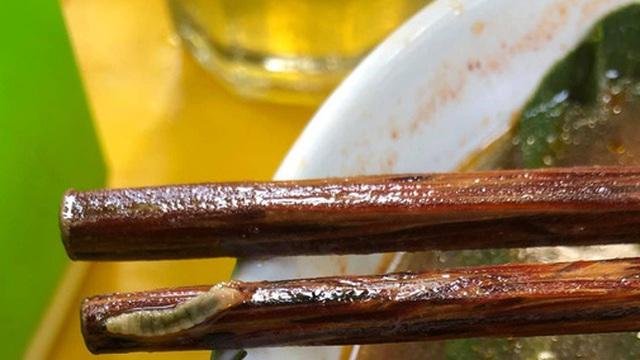 Cô gái rợn người khi thấy lũ sâu bò lổm ngổm trên rau trong bát mì chua cay, nhưng thái độ của chủ quán ăn mới gây ức chế hơn cả