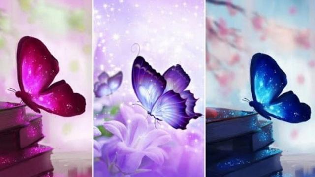 Chọn con bướm mà bạn yêu thích nhất, điều đó sẽ tiết lộ bản chất thật trong con người bạn