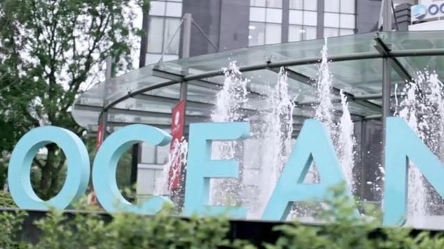 Sau thay đổi nhận diện thương hiệu, Tập đoàn Đại Dương thời hậu Hà Văn Thắm muốn đổi tên gọi