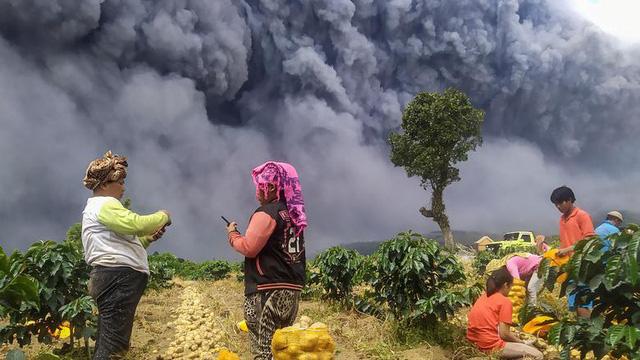 24h qua ảnh: Nông dân thu hoạch khoai tây gần núi lửa phun trào dữ dội