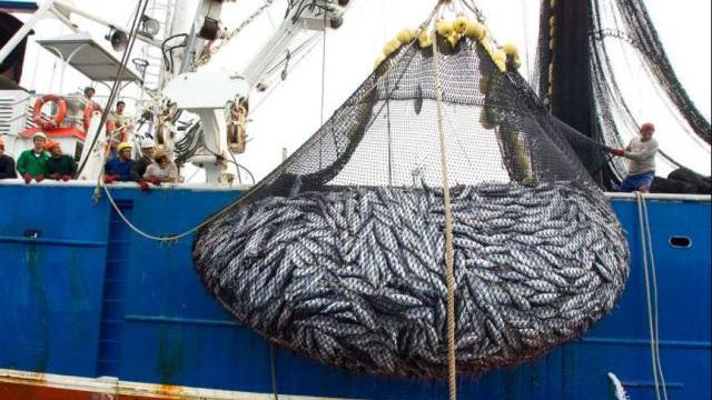 Đội tàu cá Trung Quốc đông chưa từng thấy gần quần đảo Ecuador: Ngoại trưởng Mỹ lên tiếng