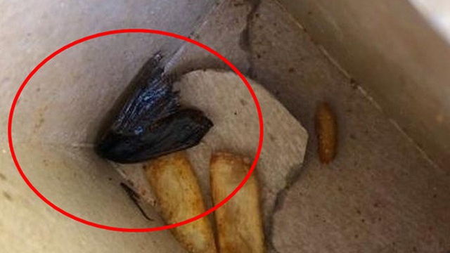 """Ăn ngon lành gần hết hộp khoai tây chiên, anh chàng phát hoảng khi phát hiện """"vật thể lạ"""" dưới đáy, chỉ muốn nôn hết ra số thức ăn kia"""
