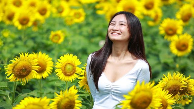 [Ảnh] Mê mẩn cánh đồng hoa hướng dương 'hút' giới trẻ check-in dịp cuối tuần ở Sài Gòn