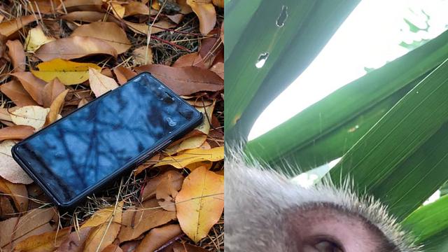 'Tên trộm' điện thoại ngố nhất hành tinh: Chụp selfie đầy máy, khiến chủ nhân không thể giận nổi