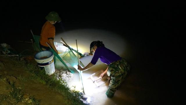 """Rét tê tái, dân vẫn dầm mình trong nước để vớt """"lộc trời"""",  1 đêm làm bằng cả năm trồng lúa"""