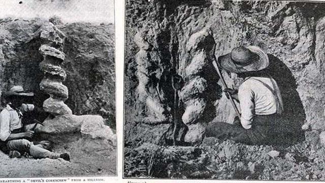 Ai là người đã làm ra 'cái vặn nút chai của quỷ' cao hơn 2 mét này từ hàng triệu năm trước?