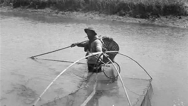 Mẻ lưới nặng trịch không thể kéo lên: Ngư dân bất ngờ nhận ra thứ mắc vào lưới không phải cá mà 'thần vật'