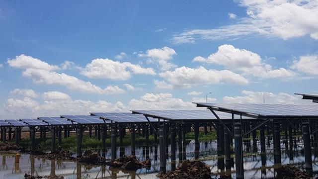 Lựa chọn nhà đầu tư thực hiện hai dự án nhà máy điện tại Long An